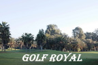 2020-01-31 UFE au Golf Royal prises par Alain (Valli)